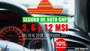 Seguro de Auto GNP
